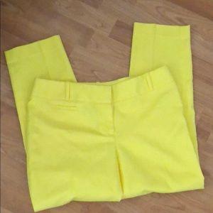 Beautiful Bright Loft soft pants